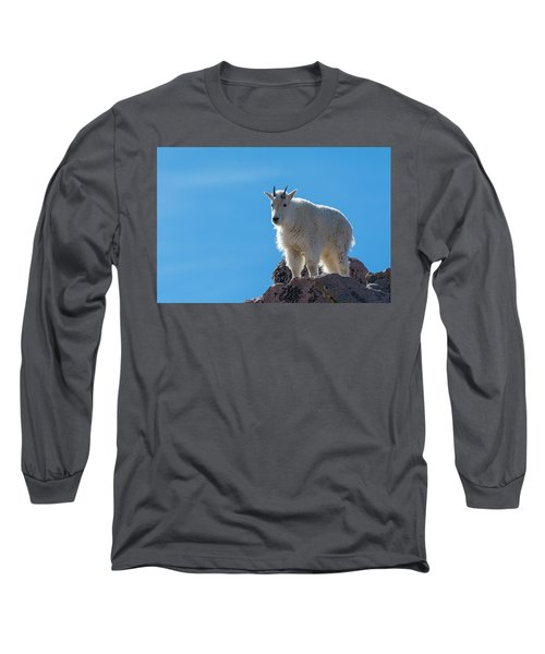 Long Sleeve T-Shirt featuring the photograph Mountain Goat 4 by Gary Lengyel