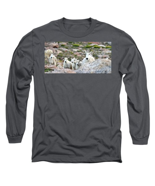 Long Sleeve T-Shirt featuring the photograph Mountain Goat Family Panorama by Scott Mahon