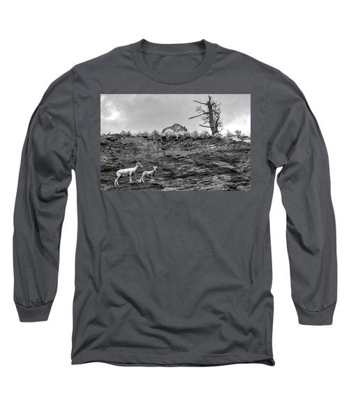Mountain Goat With A Kid For A Walk Long Sleeve T-Shirt
