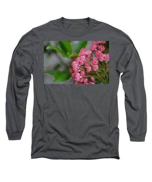 Mountain Laurel Buds Long Sleeve T-Shirt