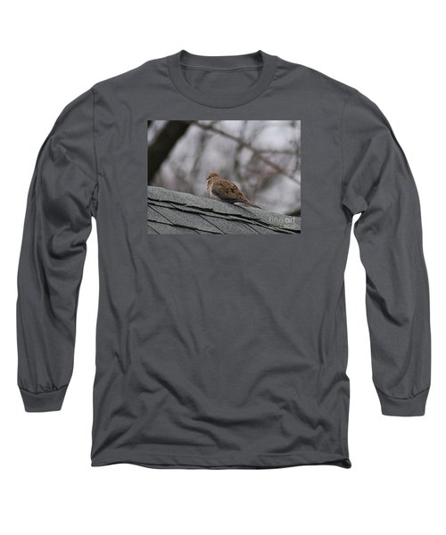 Long Sleeve T-Shirt featuring the photograph Mourning Dove 20120318_1a by Tina Hopkins