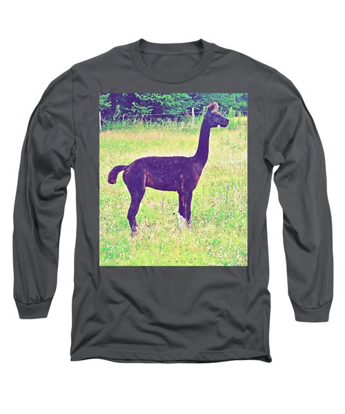 Mr Alpaca Long Sleeve T-Shirt