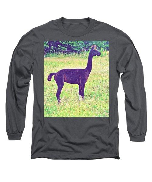 Mr Alpaca Long Sleeve T-Shirt