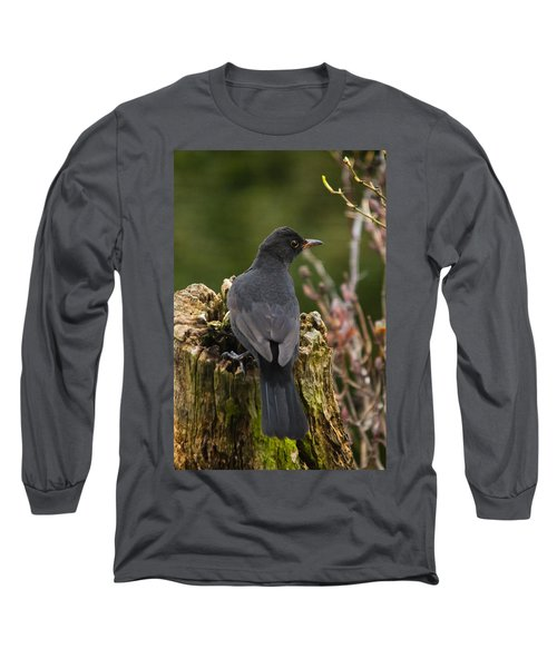 Mr Birdy Long Sleeve T-Shirt