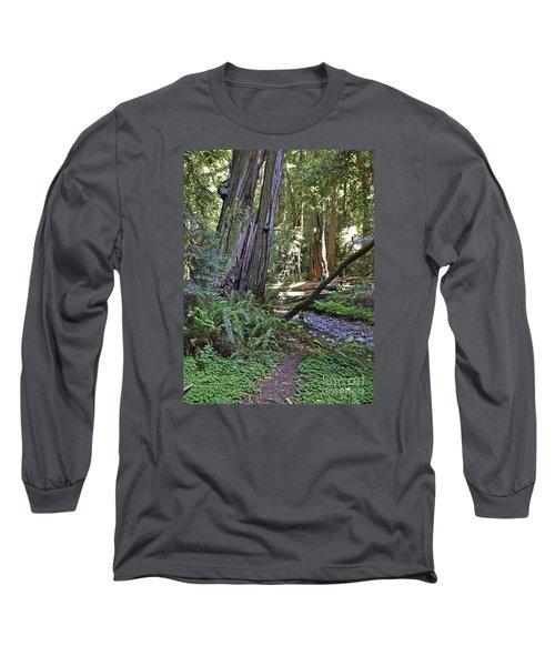 Muir Woods Beauty Long Sleeve T-Shirt
