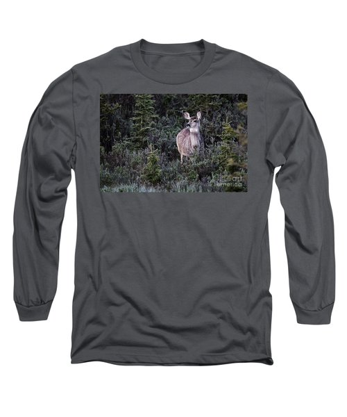 Mule Deer Doe Long Sleeve T-Shirt