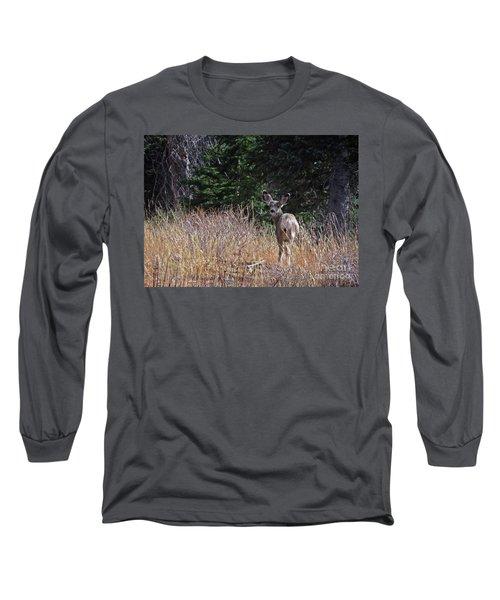 Mule Deer In Utah Long Sleeve T-Shirt by Cindy Murphy - NightVisions