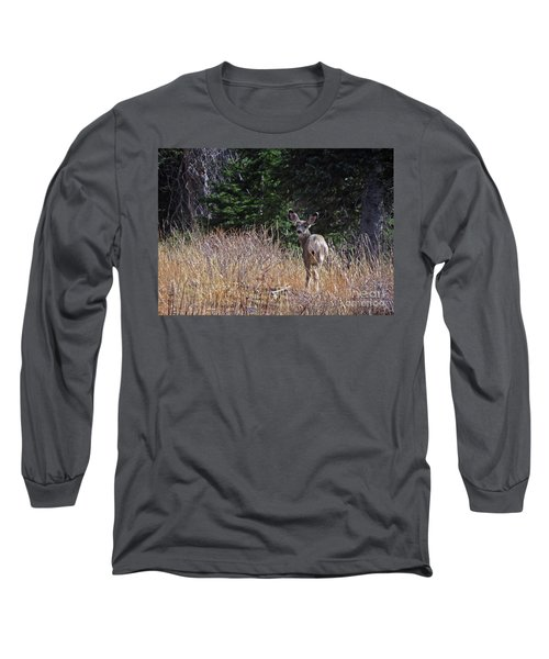 Mule Deer In Utah Long Sleeve T-Shirt