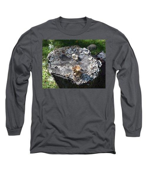 Mushroom Stump Long Sleeve T-Shirt by R  Allen Swezey