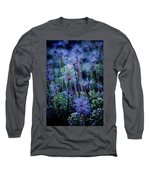 Natural Fireworks 4791 H_2 Long Sleeve T-Shirt