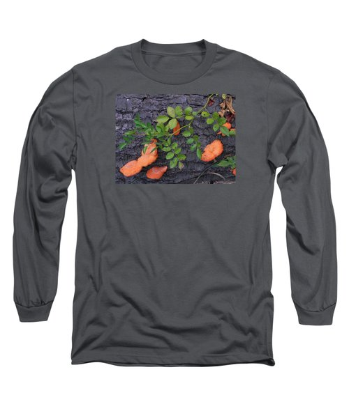 Nature's Beauty Long Sleeve T-Shirt by Christine Lathrop