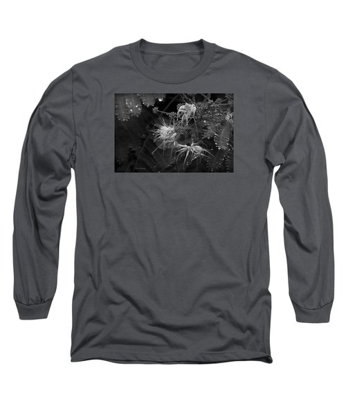 Nature's Decor Long Sleeve T-Shirt by Jeanette C Landstrom