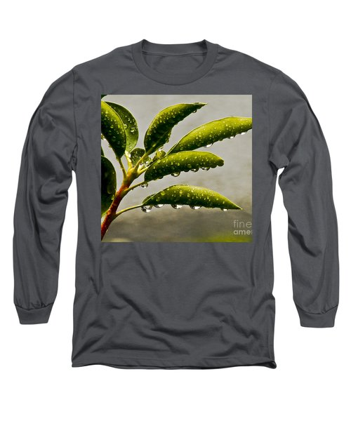 Early Morning Raindrops Long Sleeve T-Shirt by Carol F Austin