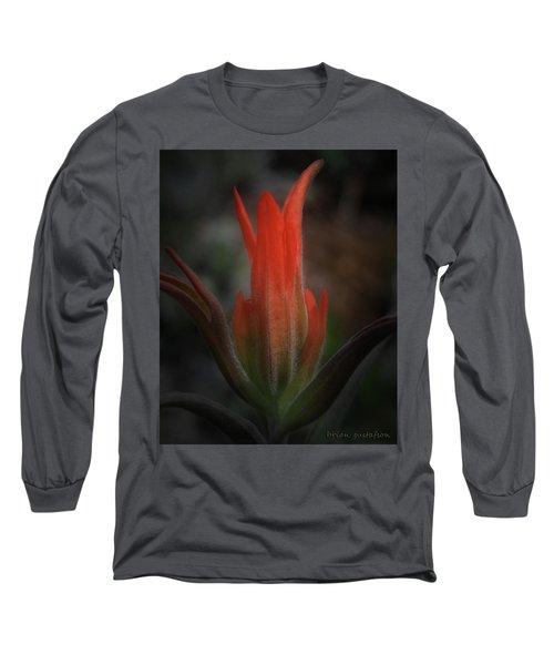 Nature's Fire Long Sleeve T-Shirt