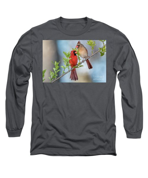 Northern Cardinal Pair In Spring Long Sleeve T-Shirt