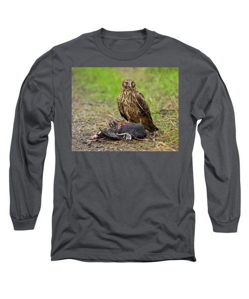 Northern Harrier Long Sleeve T-Shirt by Doug Herr