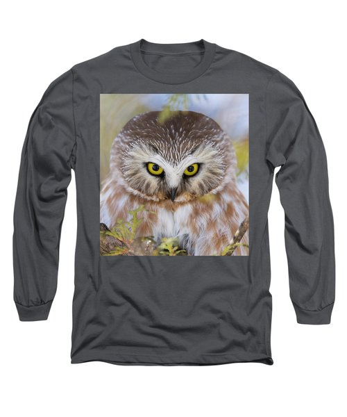 Long Sleeve T-Shirt featuring the photograph Northern Saw-whet Owl Portrait by Mircea Costina Photography