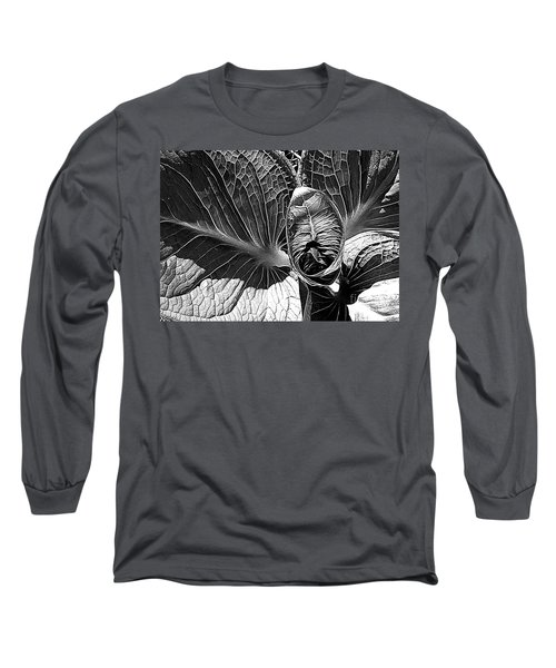 Northern Spring Herald Long Sleeve T-Shirt