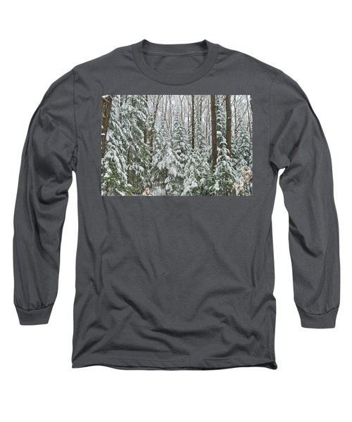 Northern Winter Long Sleeve T-Shirt by Michael Peychich