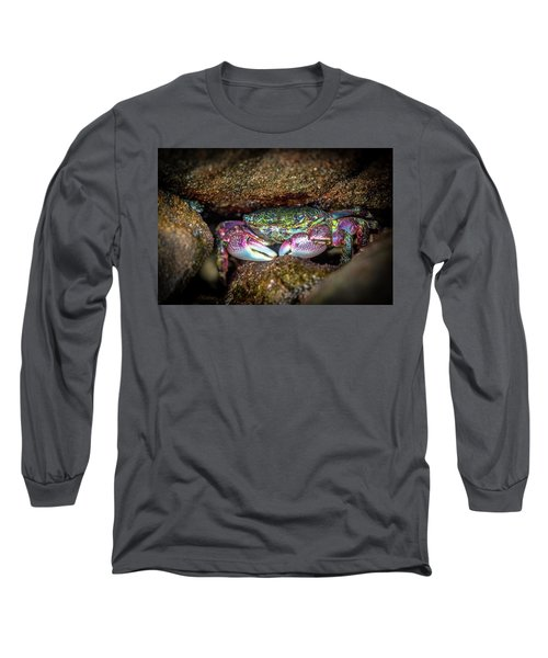 Nuthin To See Here Long Sleeve T-Shirt