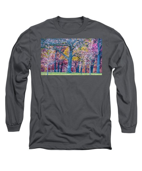 Oak Trees At Fall Long Sleeve T-Shirt