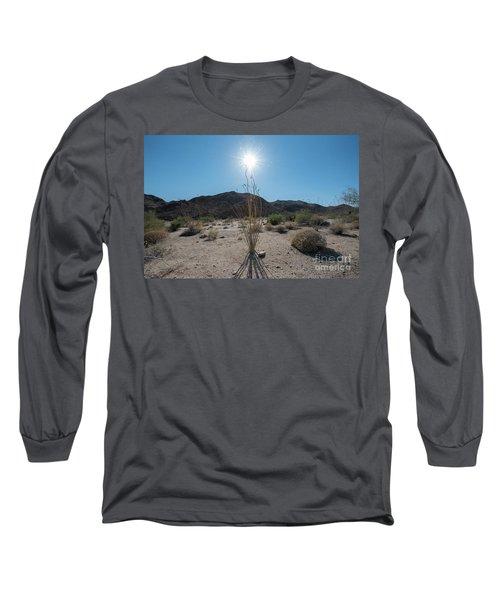 Ocotillo Glow Long Sleeve T-Shirt by Robert Loe