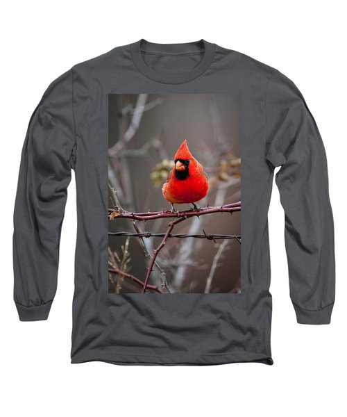 Of Barbs And Thorns Long Sleeve T-Shirt