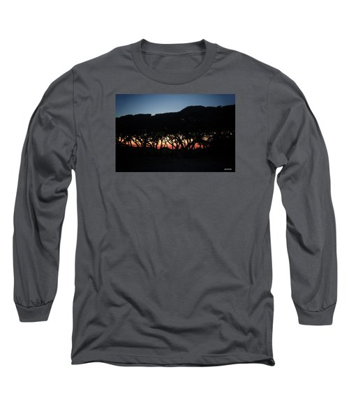 Oh Those Trees Long Sleeve T-Shirt by Phil Mancuso