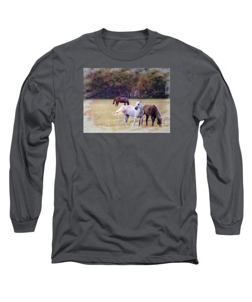Ok Horse Ranch_1c Long Sleeve T-Shirt