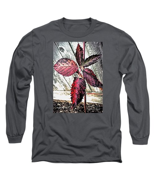 Old And  Faded Long Sleeve T-Shirt