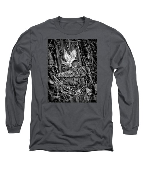 Old Hinge On Old Board Long Sleeve T-Shirt by Walt Foegelle