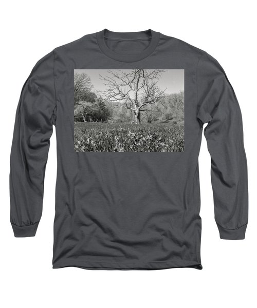 Old Oak Long Sleeve T-Shirt