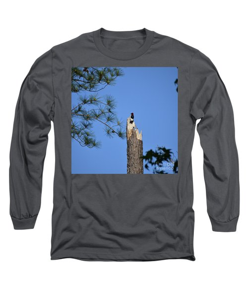 Long Sleeve T-Shirt featuring the photograph Old Red by Skip Willits