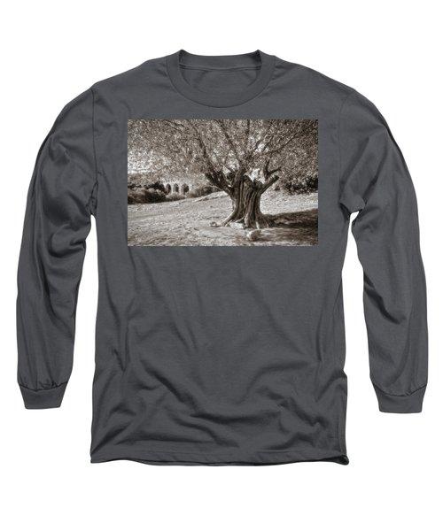 Olivo Long Sleeve T-Shirt
