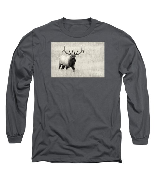 On The Fight Long Sleeve T-Shirt by Aaron Whittemore