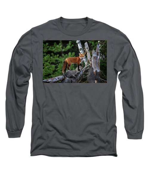 On The Lookout Long Sleeve T-Shirt by Gary Hall