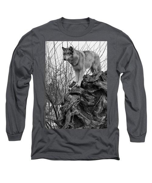 On Top Long Sleeve T-Shirt by Shari Jardina