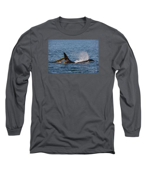Onyx L87 Long Sleeve T-Shirt by Gayle Swigart