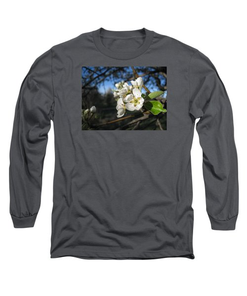 Open For Beesness Long Sleeve T-Shirt