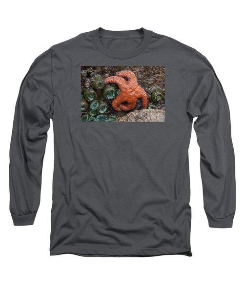 Orange Starfish And Anemonies Long Sleeve T-Shirt by Chuck Flewelling