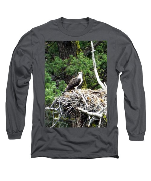 Osprey In Nest Long Sleeve T-Shirt