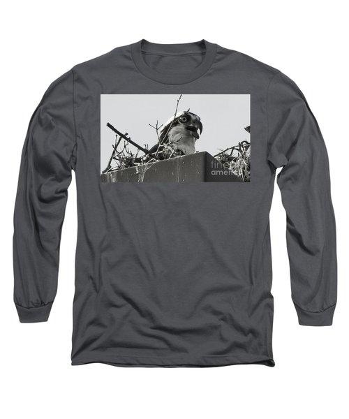 Osprey In Nest Long Sleeve T-Shirt