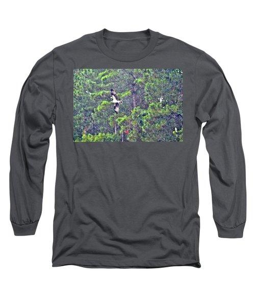 Osprey In Rain Long Sleeve T-Shirt