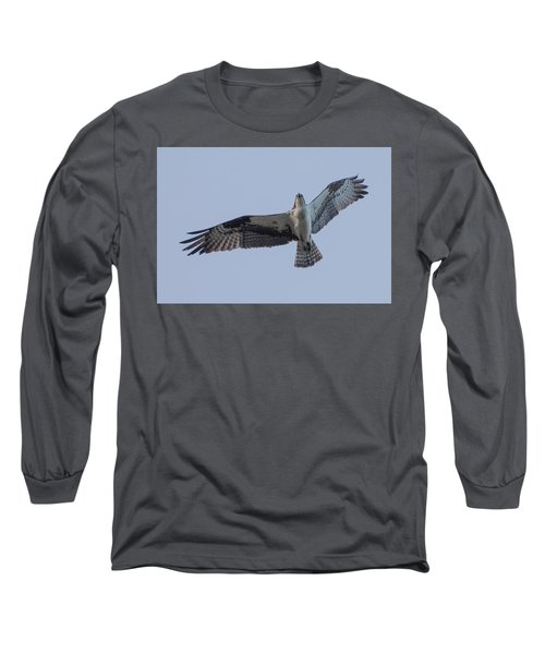Osprey Long Sleeve T-Shirt by Keith Boone