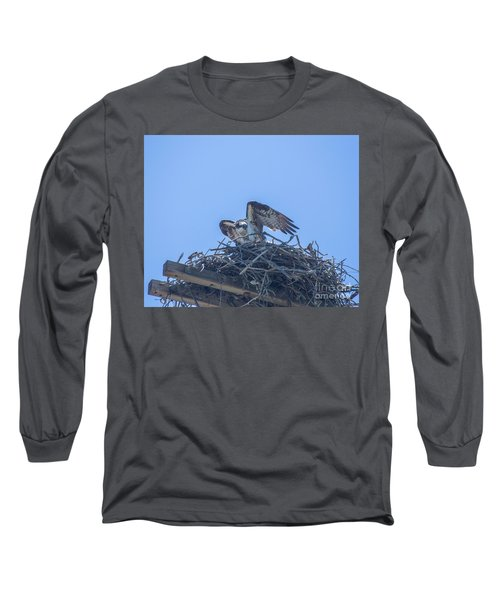 Osprey Nest II Long Sleeve T-Shirt