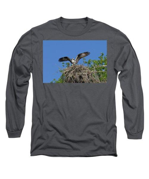 Osprey On Nest Wings Held High Long Sleeve T-Shirt