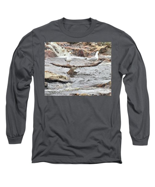 Long Sleeve T-Shirt featuring the photograph Osprey Takes Fish From Gulls by Debbie Stahre