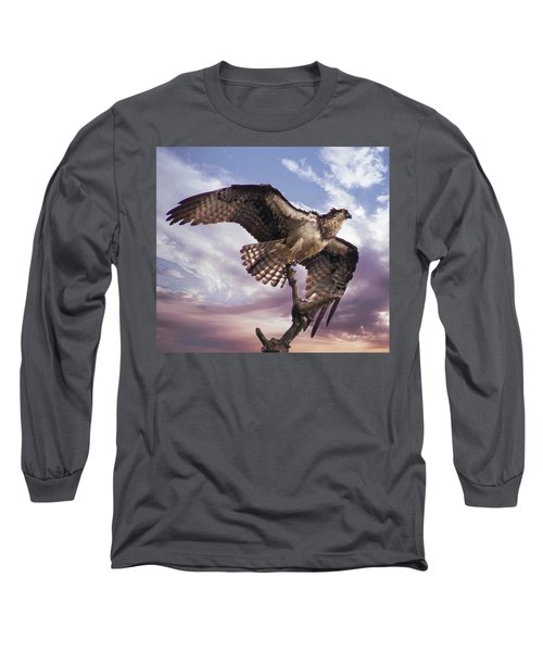 Osprey Wing Long Sleeve T-Shirt
