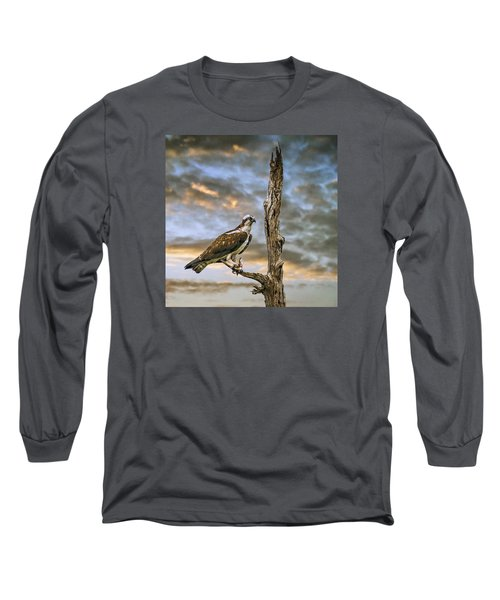Long Sleeve T-Shirt featuring the photograph Osprey With Supper by Brian Tarr