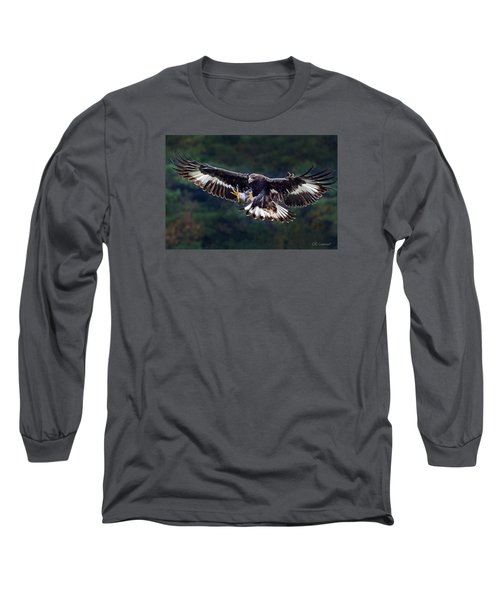 Out Of The Forest Long Sleeve T-Shirt by CR  Courson